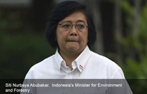 Siti Nurbaya bakar