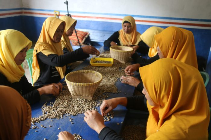 """Kelompok Wanita Tani KWT) Himawari juga dilibatkan dalam pengolahan produk kopi """"Codot""""."""