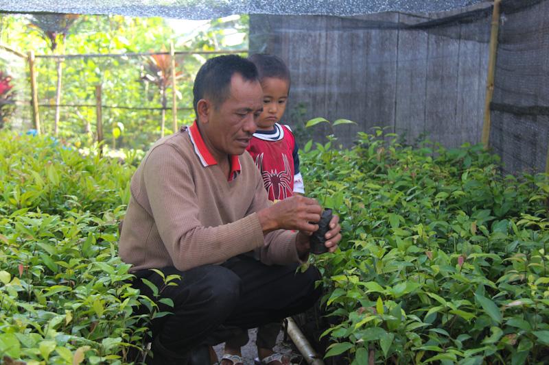 Salah seorang penerima bantuan bibit dari TFCA-Sumatera sedang merawat bibitnya sebelum ditanam.